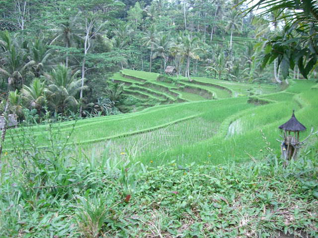 UNESCO Werelderfgoed van Indonesië: Gunung Kawi