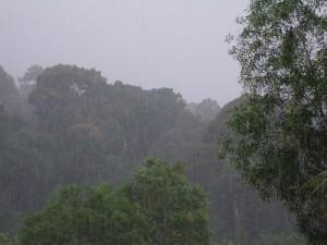 Het klimaat in Brunei is tropisch: regen kan het hele jaar door vallen.
