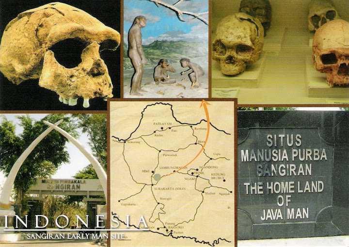 UNESCO werelderfgoed van Indonesië: Sangiran