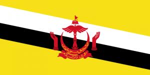 de vlag van brunei