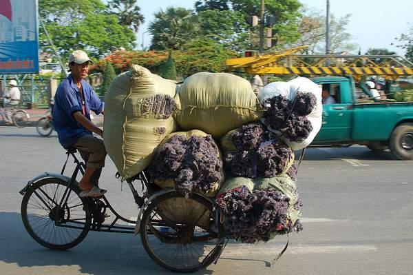 De fiets als vrachtwagen