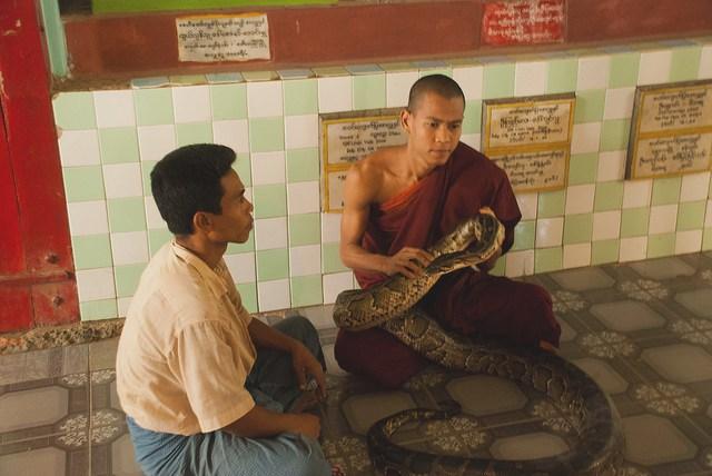Snake Pagoda Myanmar