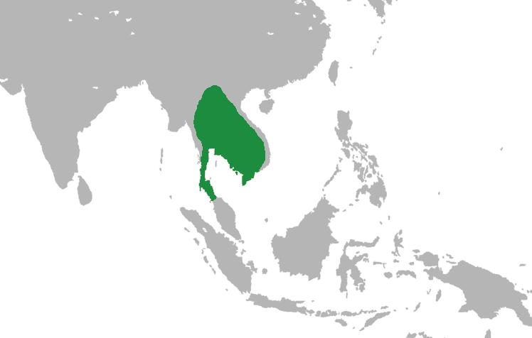 Kaart van het Khmer rijk op haar hoogtepunt. Angkor was de hoofdstad van dit rijk.