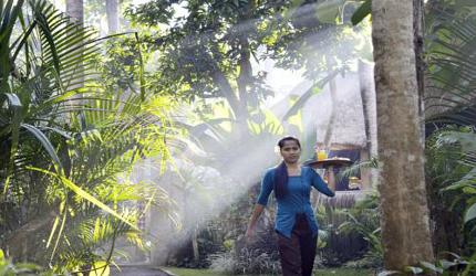 De beste spa hotels van Bali: Alam Nusa
