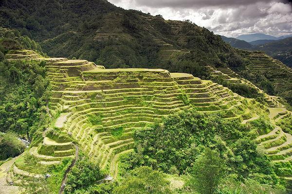 De rijstterrassen van de Cordillera's, één van de top bezienswaardigheden van de Filipijnen