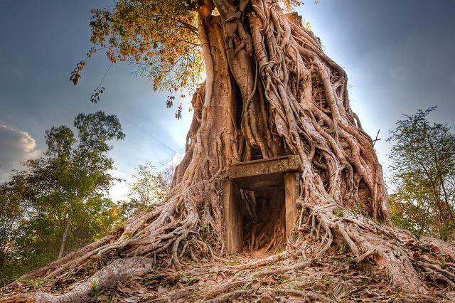 Sambor Prei Kuk is één van de bezienswaardigheden van Cambodja