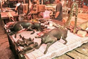 rondreis Sulaweis: markt Tomohon