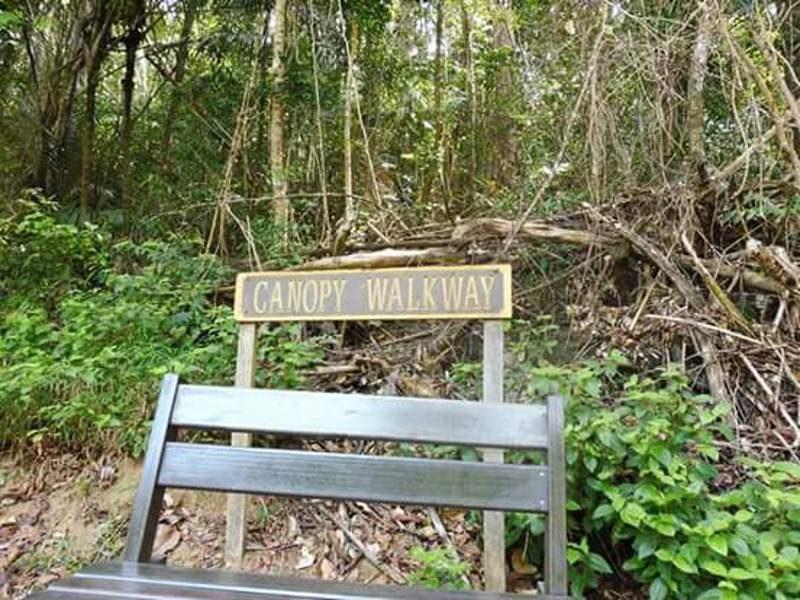 Canopy Walkway zoam