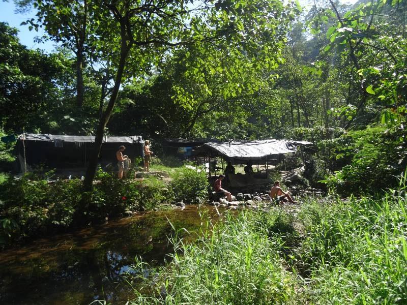 orang-oetang-omgeving