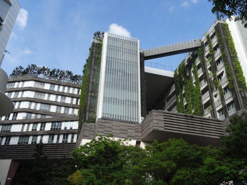 Verticale tuinen in Singapore